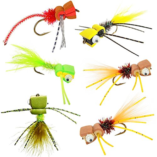 Bass Panfish Popper Assortment - 6 Flies with Fly Cup