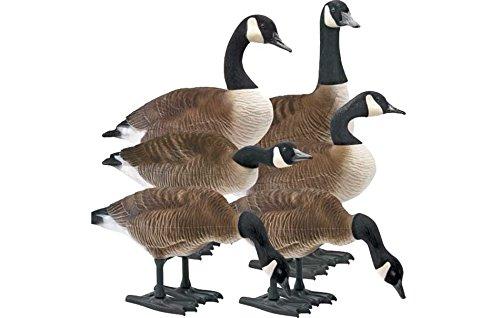 Big Foot B2 Full-Body Fully Flocked Canada Goose Decoys 6 Pack