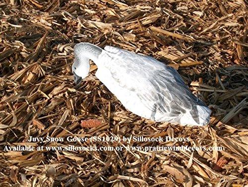 Sillosocks Juvy Snow Goose Decoy 12-Pack White