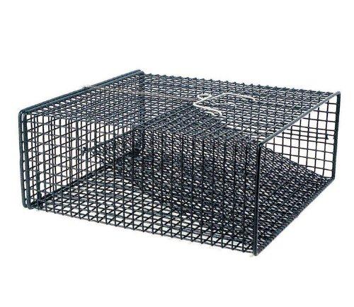 Frabill Crawfish Trap Black 12 x 12 x 5-Inch Flat