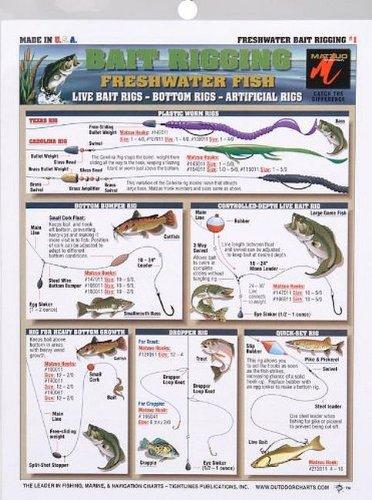 Fishermans - Freshwater Bait Rigging 1
