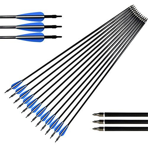 NIKA ARCHERY 30 inch Fiberglass Arrows for Compound Recurve Bow Shooting 12 pcslot