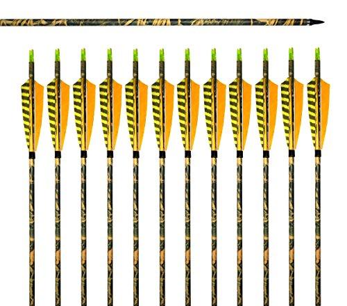 Albertu 31 Carbon Arrows Shaft Hunting Arrows Archery with Turkey Yellow Printed Feathers Screw-In Field Arrow Tips 6 arrows