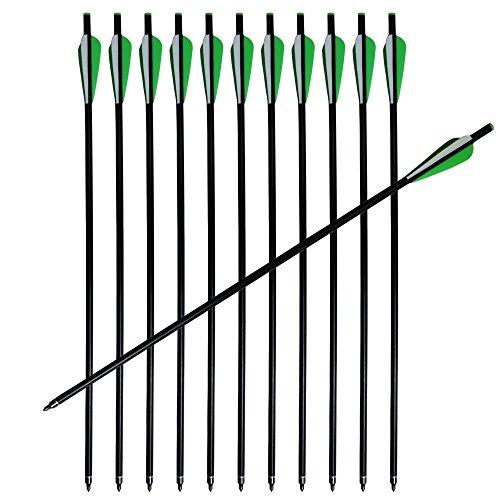 12Pcs 20 Crossbow Bolts Fiberglass Arrows Flat Nocks 8mm Shaft
