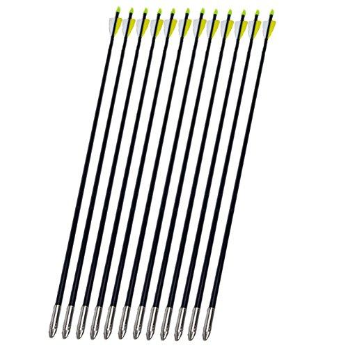 GPP Archery Arrow Hunter Nocks Fletched Arrows Fiberglass Target Practice 80cm X12
