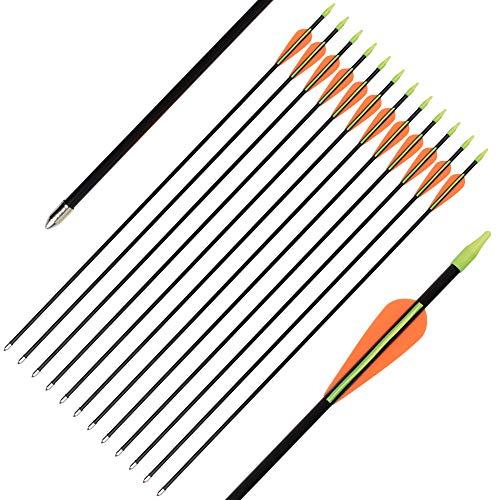 SHENG-RUI 24 26 Fiberglass Archery Target Arrows - Practice Arrows or Youth Arrows for Recurve Bow