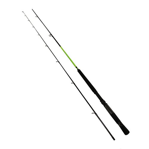 Lews Mr Crappie SS Custom Graphite 10-Foot 2-Piece Spinning Rod