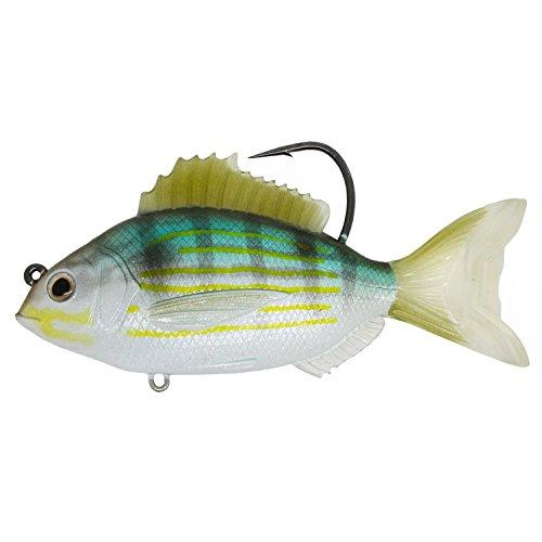 LiveTarget PFS93MS719 Pinfish Rattlebait Saltwater 3 12 50 MediumSlow Sinking SilverGreen