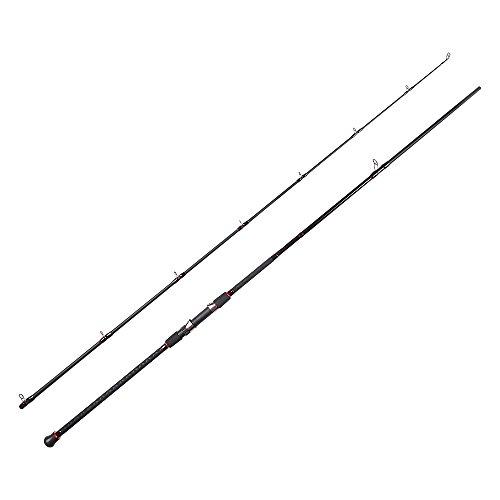 Fiblink Surf Casting Fishing Rod 2-Piece Graphite Travel Baitcasting Fishing Rod Length 12