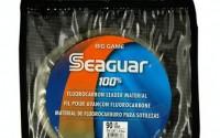 Seaguar-Blue-Label-Big-Game-30-Meter-Fluorocarbon-Leader-150-Pounds-27.jpg