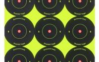 Birchwood-Casey-Shoot-N-C-2-Inch-Round-Bull-s-Eye-Target-Pack-of-12-22.jpg